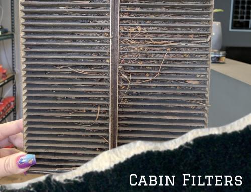 Cabin Filter- A Breath of Fresh Air